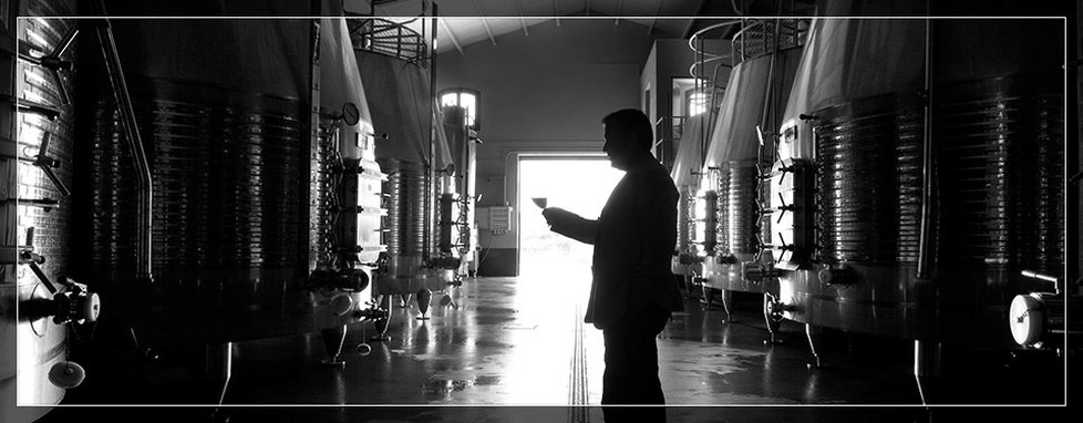 juan-perez-wine-master